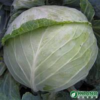 Семена капусты белокочанной средней Наоми F1 (Naomi F1) 1 000 сем.