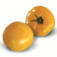 Семена томата КС 10 F1 (KS 10 F1), 500 сем., желтого индетерминантного (высокорослого)