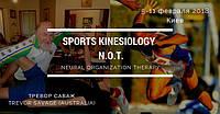 Спортивная Кинезиология (метод Hyperton-X) & Терапия Нейронной Организации