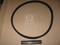 Ремень 16х11х1103 компрессора 130 (арт. 130-3509250), AAHZX