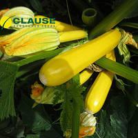 Семена кабачка Мери Голд F1 (Clause), 500 семян — ранний гибрид, золотисто-желтый.