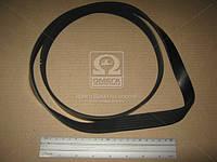 Ремень поликлиновый 6PK1420 (производство DONGIL) (арт. 6PK1420), AAHZX