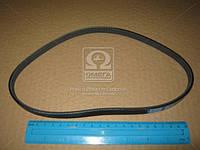 Ремень поликлиновый 3PK630 (производство DONGIL) (арт. 3PK630)