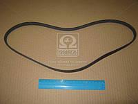 Ремень поликлиновый 4PK1045 (производство DONGIL) (арт. 4PK1045), AAHZX