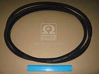 Ремень SPВ 3750 (УБ-3750) (производство Rubena) (арт. SPB 3750), ACHZX