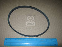 Ремень поликлиновый 3PK495 (производство DONGIL) (арт. 3PK495)