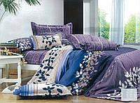 Двуспальный комплект постельного белья евро 200*220 хлопок  (8747) TM KRISPOL Украина