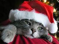 Осторожно Рождество!!!