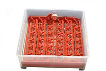 Инвекторный Инкубатор с автопереворотом MS-36/144 (36 куриных, 144 перепелиных), фото 3