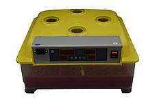 Инвекторный Инкубатор с автопереворотом MS-36/144 (36 куриных, 144 перепелиных), фото 2