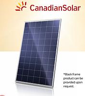Сонячна батарея Canadian Solar CS6K-275P 275W