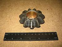 Сателлит крестовины МОД МАЗ (Производство МАЗ) 6422-2506055