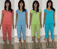 Комплект бриджи с футболкой из полотна кулирка 44-56 р, женские комплекты пижам оптом от производителя
