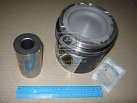 Поршень DAF MX 265, MX-13 265, MX 300, EURO 5 (Производство Mahle) 213 PI 00102 000