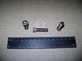 Винт регулировочный ГАЗ 3307,66 коромысла клапана (Производство ГАЗ) 66-1007075-02