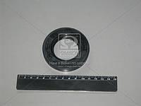 Сальник хвостовика моста заднего ГАЗ 42х75х10 (производство Россия) (арт. 2410-2402052)