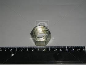 Гайка ступицы задней (производство САЗ) (арт. 36-3104019)