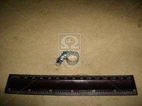 Хомут затяжной оцинковка 8х12 (производство NORMA) (арт. Хомут 8-12/9 W1)