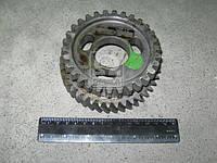 Шестерня привода ТНВД Д245.30Е2 (Производство ММЗ) 245-1006311-В1-02