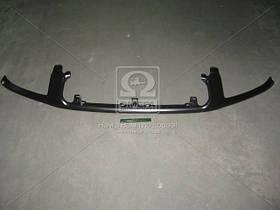 Полоска под фары Toyota RAV4 01- (производство TEMPEST) (арт. 490577990), ADHZX