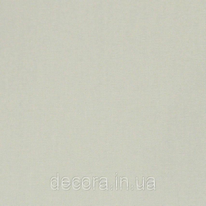 Рулонні штори Стандарт А51 40см.
