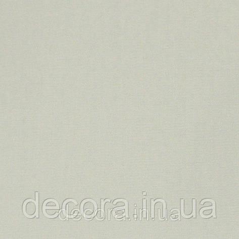 Рулонні штори Стандарт А51 40см., фото 2