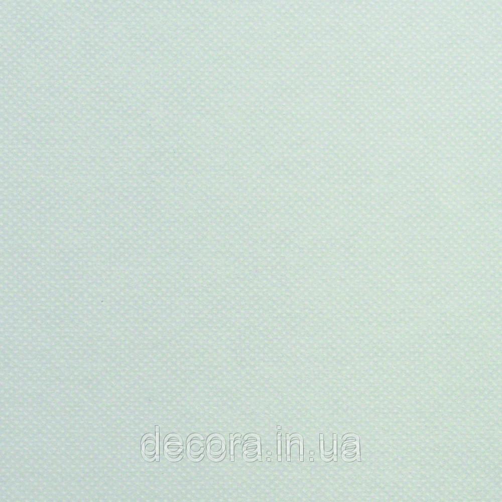 Рулонні штори Стандарт Thermo blocker b/o Grau 40см.