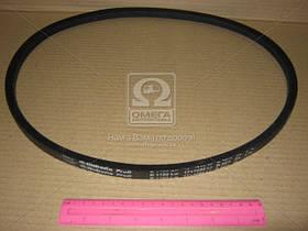 Ремень 14х10х1120 (Производство Rubena) 14x10-1120, AAHZX