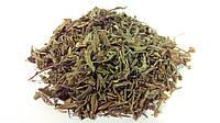 Курильский чай (лапчатка кустарниковая, пятилистник), фото 1