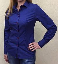 Женская блуза синяя с красным принтом