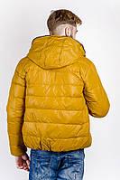 Куртка мужская спортивная, пуховик №249KF001 (Горчичный)