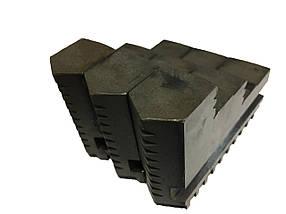 Кулачки прямые к токарному патрону ф250 мм (шаг 9)