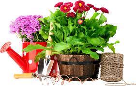 Всё для сада и огорода