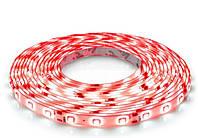 Светодиодная лента SMD3528-60 IP65 красная 1м