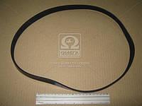 Ремень поликлиновый 6PK1045 (Производство DONGIL) 6PK1045