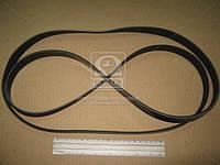 Ремень поликлиновый 6PK2145 (производство DONGIL) (арт. 6PK2145), ABHZX