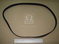 Ремень поликлиновый 6PK1230 (производство DONGIL) (арт. 6PK1230), AAHZX