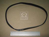 Ремень поликлиновый 5PK906 (производство DONGIL) (арт. 5PK906), AAHZX