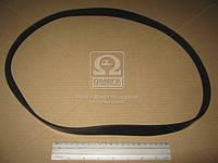 Ремень поликлиновый 6PK1080 (производство DONGIL) (арт. 6PK1080), AAHZX