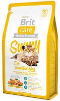 Корм для кошек с лососем и рисом для шерсти Brit Care Cat Sunny Hair