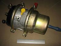 Камера тормозная с пружинным энергоаккумулятором (в сборе,тип 20/20)  ЕВРО , AFHZX