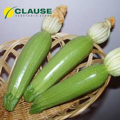 Семена кабачка Алия F1, 500 семян — ранний гибрид, светлый Clause