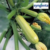 Семена кабачка Ангелина F1 / Anhelina F1, 500 сем (Syngenta) — ранний, компактный