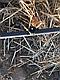 Капельная трубка (Украина), капельницы отсутствуют, диаметр 16 мм, 100м., фото 2