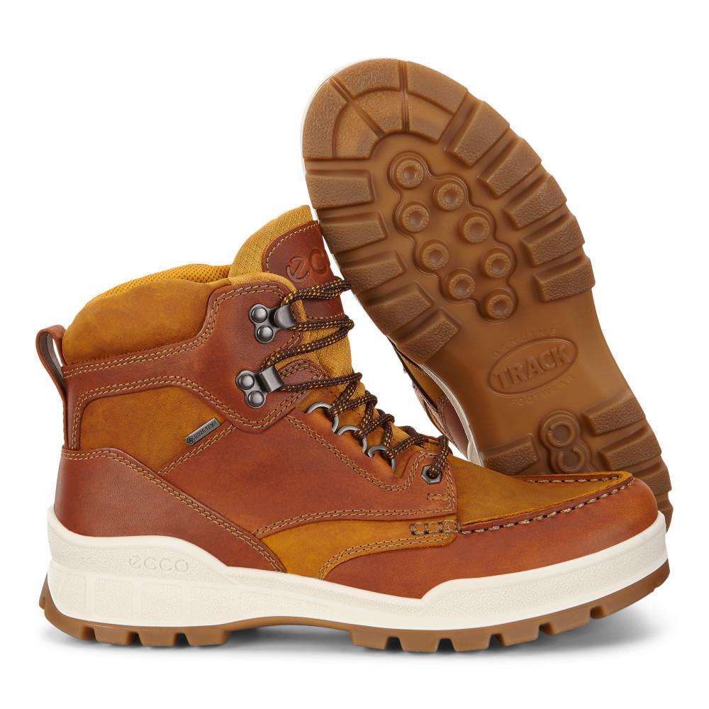 f7075d74423 Мужские ботинки зимние ECCO MENS TRACK 25 HIGH 831704-50783 - Bigl.ua