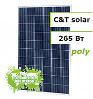 C&T Solar СT60265-P, 265 W поликристаллическая солнечная панель (батарея, фотоэлектрический модуль)
