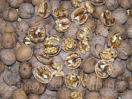 Орех грецкий (очищенный)