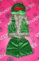 Детский карнавальный костюм Лягушка велюр