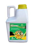 Протравитель семян АБСОЛЮТ 5 л (дерозал)