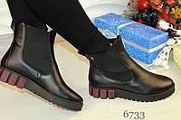 Ботинки женские 6733ох